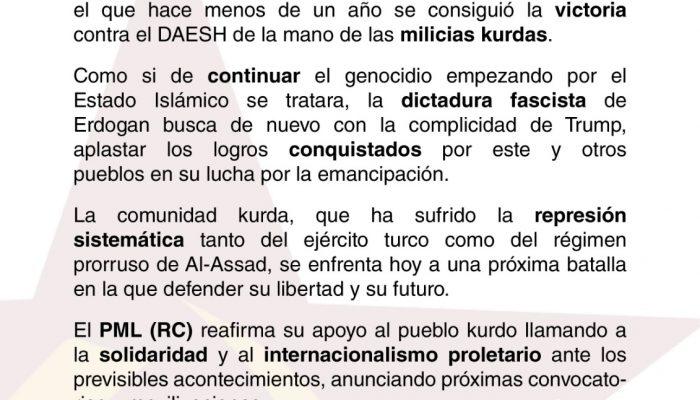 ANTE LA AMENAZA DE ERDOGAN AL PUEBLO KURDO.